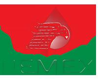 valle_logo